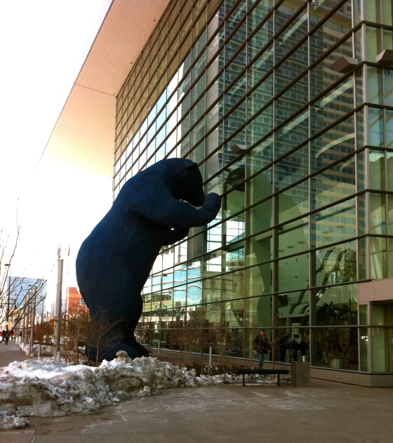 Denver Blue Bear