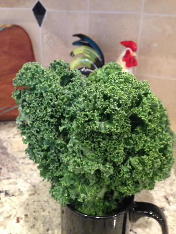 Kale, a Cash Crop?